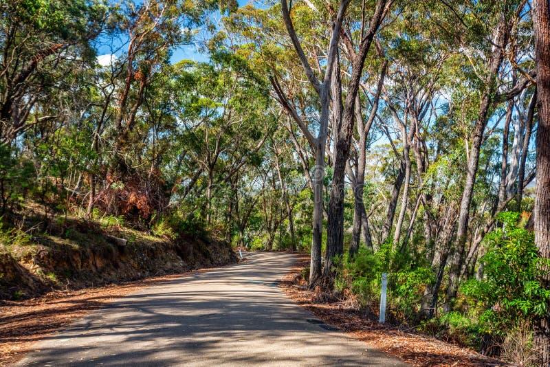 Curvando a estrada através do bushland australiano imagens de stock royalty free