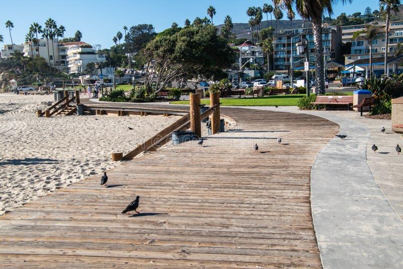 Curvando o passeio à beira mar de madeira com os pombos no Laguna Beach fotos de stock royalty free