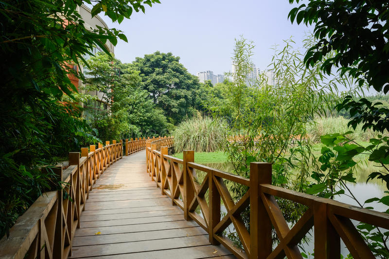 Curvar el puente de madera en árboles de la ciudad del verano foto de archivo libre de regalías