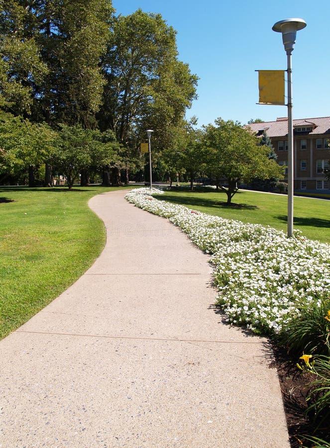Curvar la acera en un campus de la universidad fotos de archivo