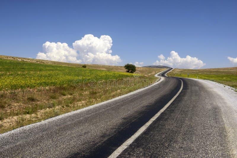 Curvar la carretera de asfalto en zona rural fotografía de archivo libre de regalías