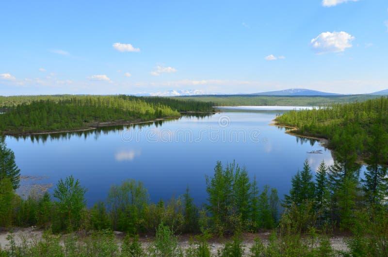 Curvas dobles de Sakukan del río 'entre bosque, las colinas y las montañas fotografía de archivo libre de regalías