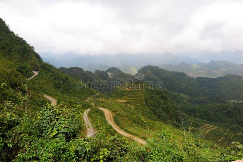 Curvas entre os ricefields em Vietname, Ha Giang fotografia de stock