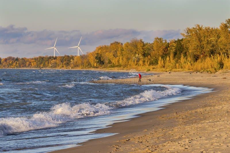 Curvatura di Huro del lago grande, Ontario, Canada immagine stock libera da diritti