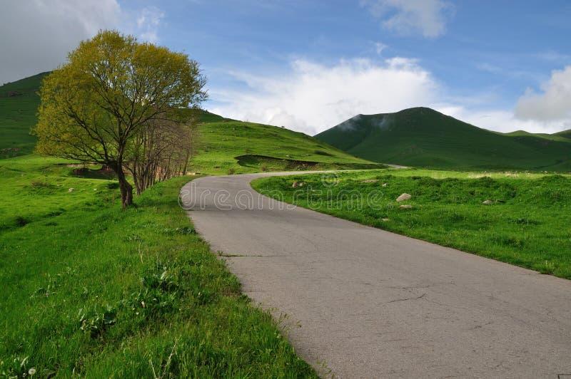 Curvaturas da estrada no campo de Arménia imagens de stock royalty free