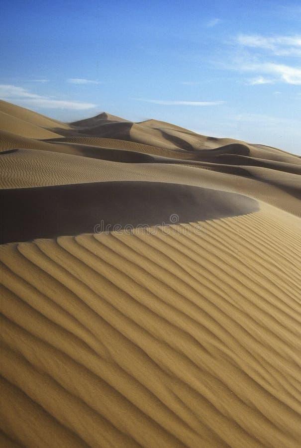 Curve della duna di sabbia fotografie stock
