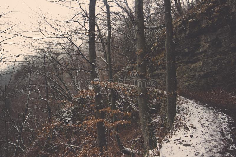 Curve left pathway covered in snow with cliff and tree royalty free stock photo