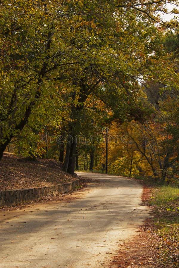 The Curve in the Road stock photography