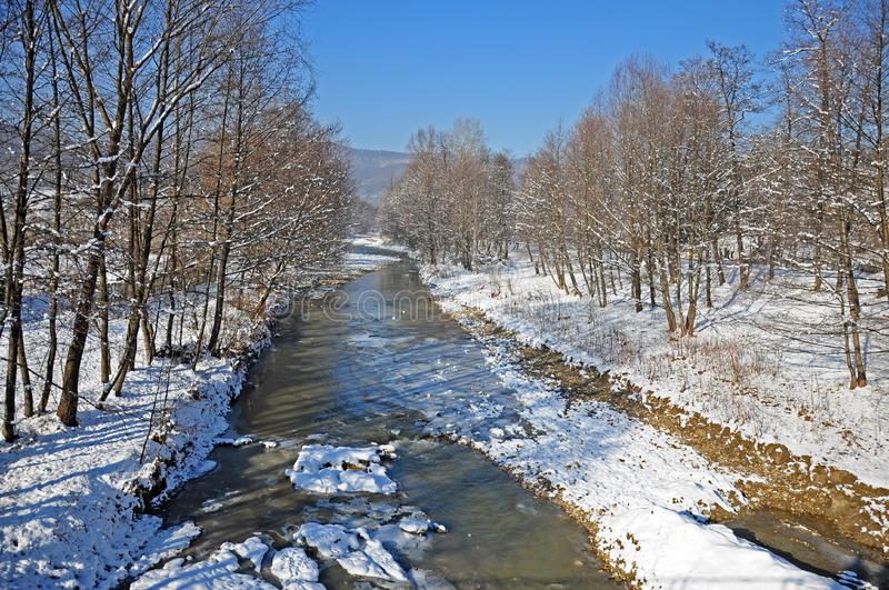 Curved iced river through the forest stock photos