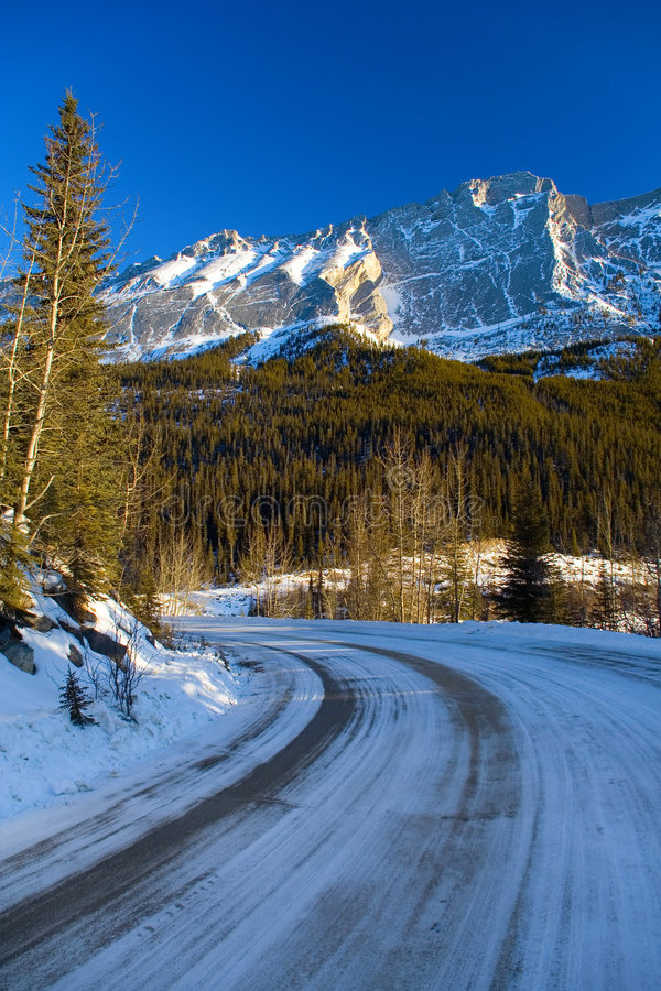 Download Curved Mountain Road stock photo. Image of cool, cold, nature - 505804