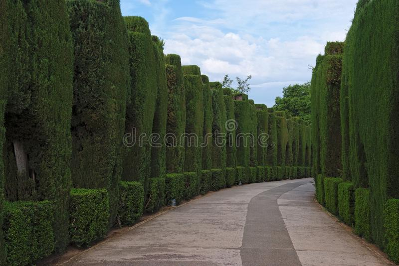Curved pathway in the gardens of Alhambra