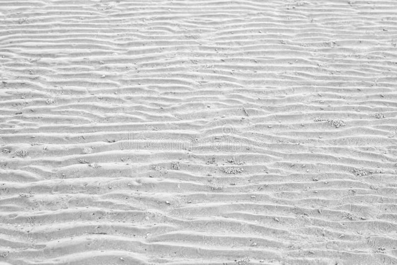 A curved pattern of beautiful sand beach for background backdrop. Curved pattern beautiful sand beach background backdrop bay bright sea zigzag earth tone shade stock photography