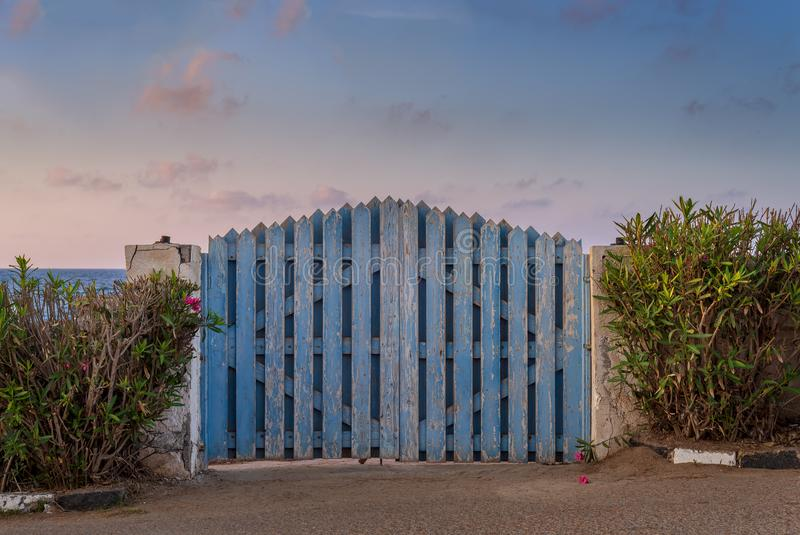Curved weathered blue wooden garden gate with green bushes at both sides and partly cloudy sky at sunrise time stock images