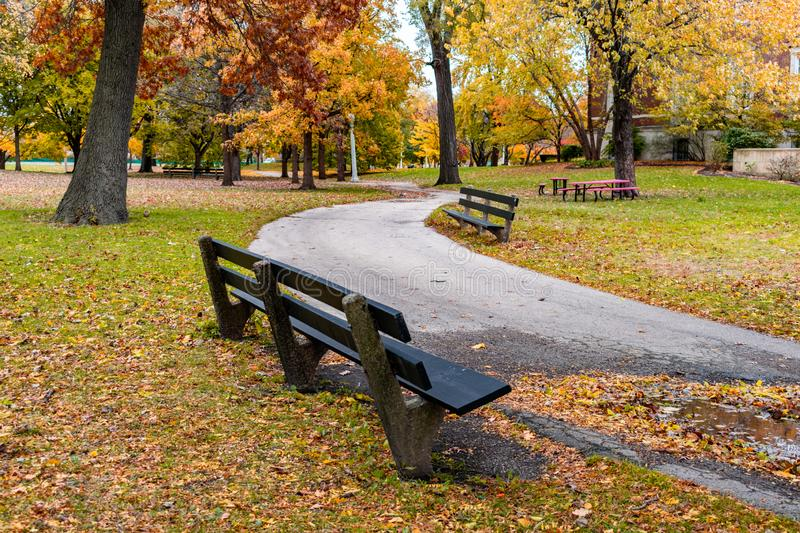 Winding Trail with Benches in Lincoln Park Chicago during Autumn stock photos