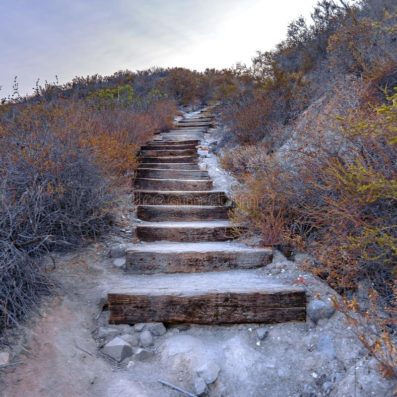 Curving wooden stairs in Monserate Mountain CA royalty free stock image