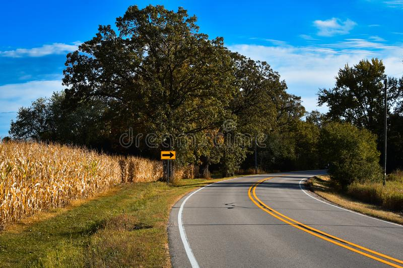 Curvy Country Road with Cornfield stock photo