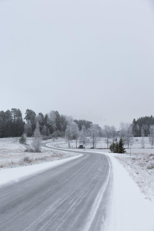 Curvy och hal väg på en vinterdag royaltyfri fotografi