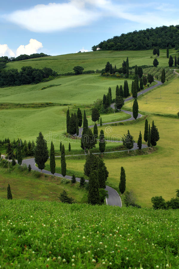 Download Curvy Road With Cypress Trees In Tuscany Stock Image - Image: 33728237