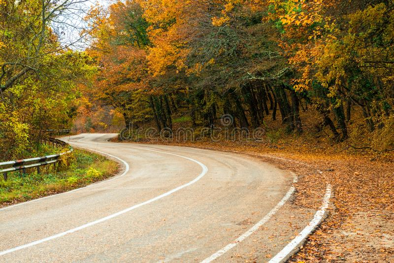 A curvy road in the mountains, beautiful autumn trees stock images