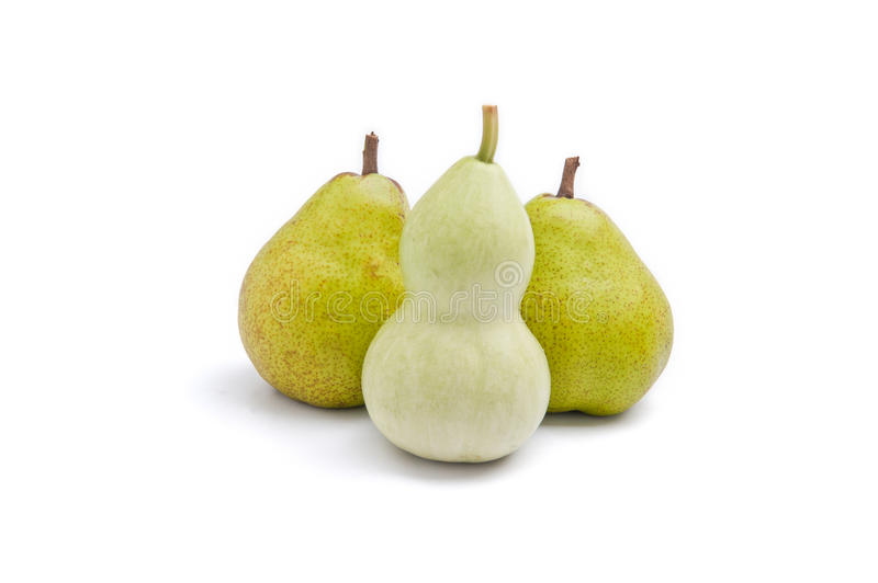 Download Curvy Shaped Body Vs Pear Shaped Body Stock Image - Image: 22859843