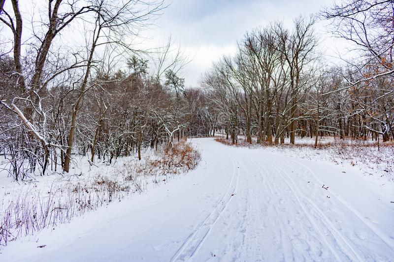 Curvy Snow Covered Trail in a Midwestern Forest during Winter stock images