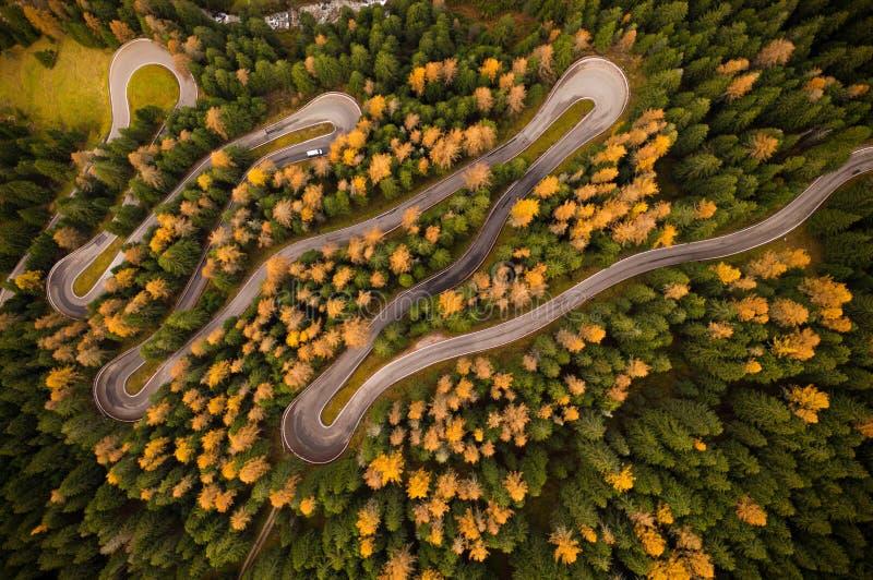 Curvy Straße in atumn Wald lizenzfreies stockbild
