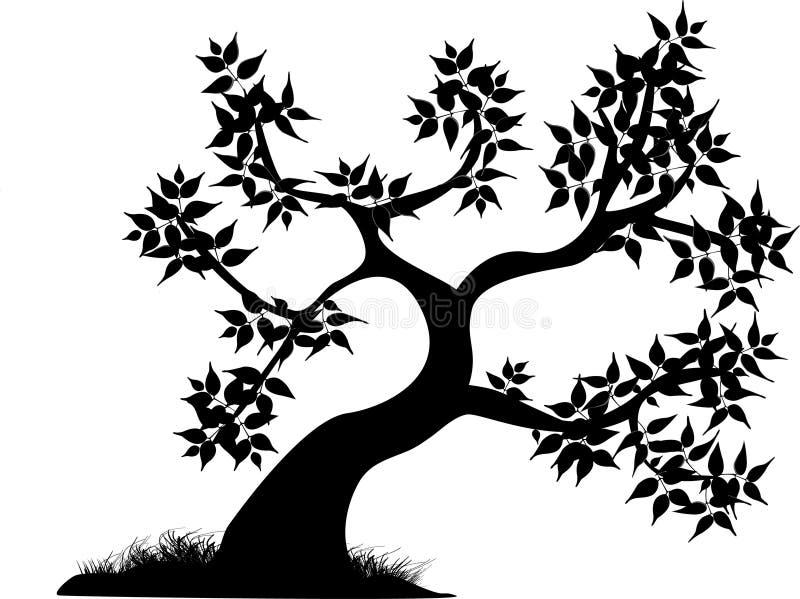 Line Drawing Grass : Curvy tree black stock vector illustration of line grass