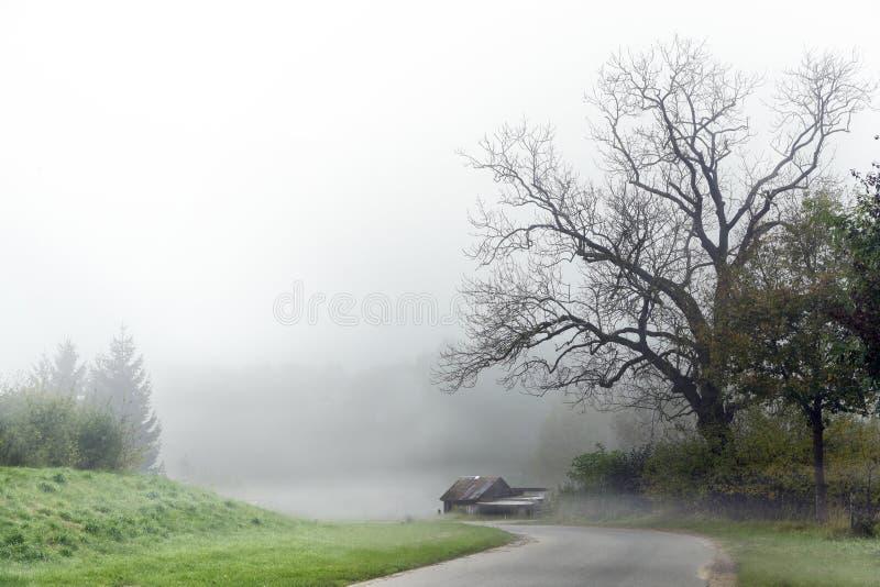 Curvy väg i höstmist med ett gammalt sjaskigt hus under ett kalt träd, grått lantligt landskap i landet, farligt dimmaväder f royaltyfri foto