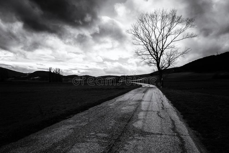 Curvy wiejska droga pod chmurnym niebem z drzewną sylwetką na dobrze zdjęcie royalty free