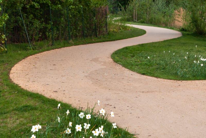 Curvy zandige weg op het groene gras stock afbeelding