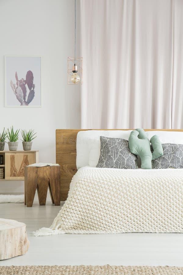 Cuscino del cactus su letto a due piazze fotografia stock libera da diritti
