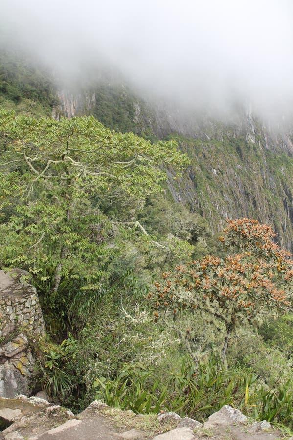 Cusco van de incasleep van Incaruïnes stock fotografie