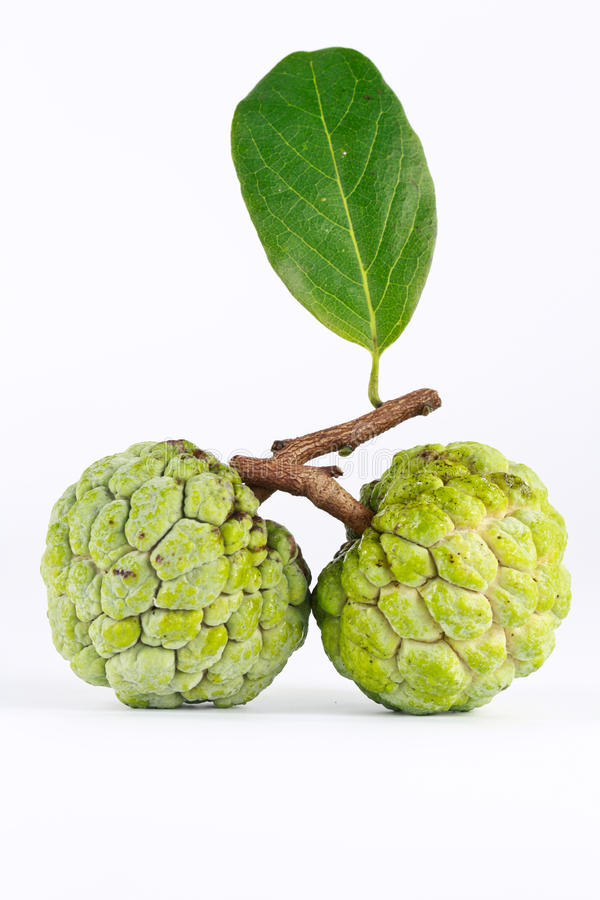 Custard apple stock photo