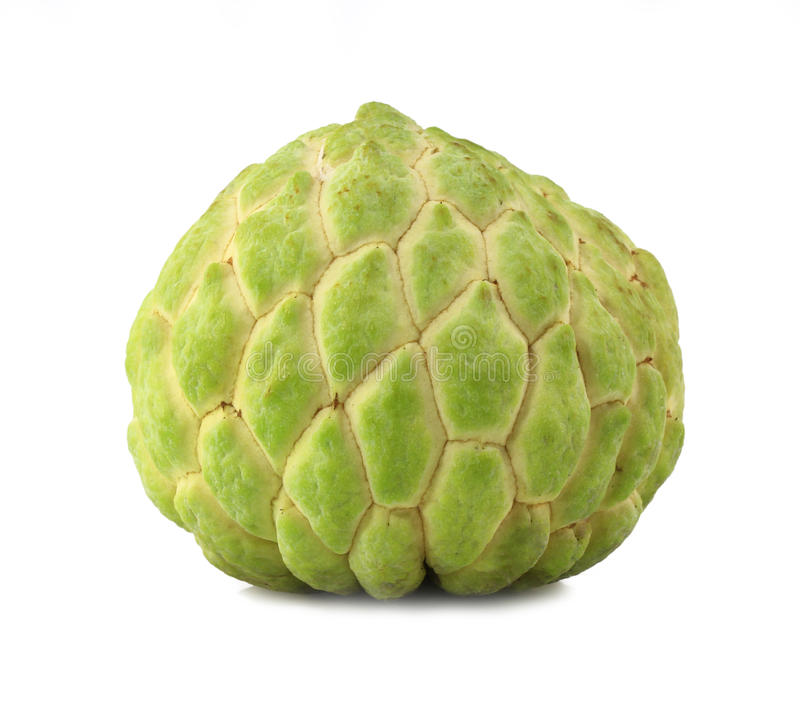 Download Custard Apple Royalty Free Stock Photography - Image: 26014017