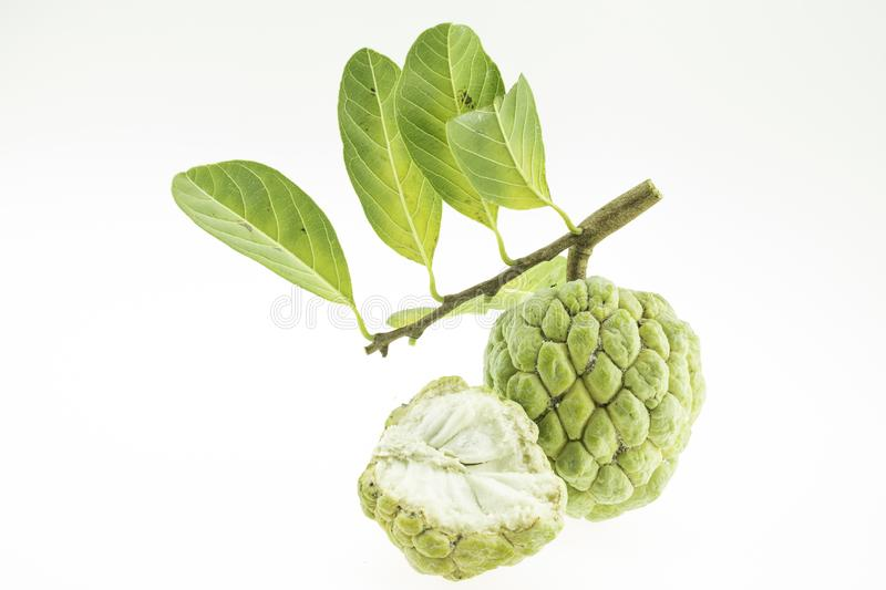 Custard apple. Isolated on a white background royalty free stock image