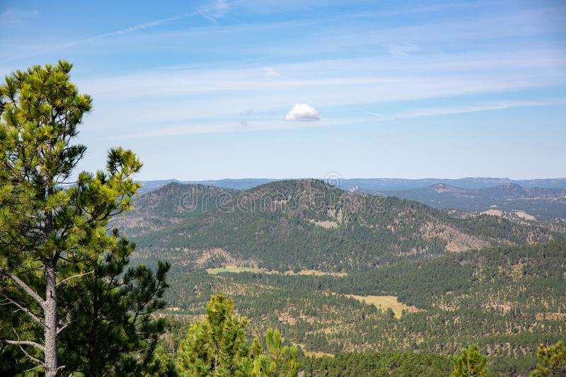 Custer国家公园风景  图库摄影