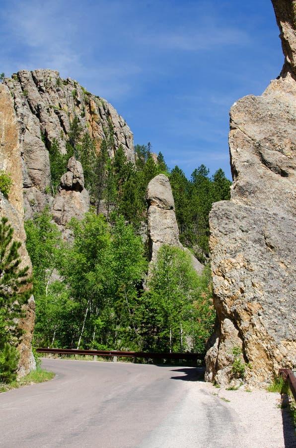 Custer delstatspark, Black Hills, South Dakota, USA royaltyfria foton