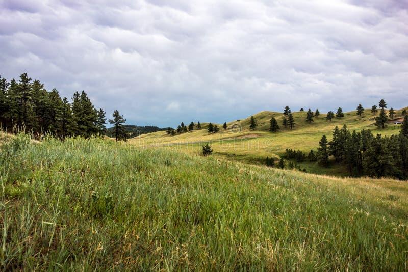 Custer State Park, Custer, SD imagem de stock royalty free