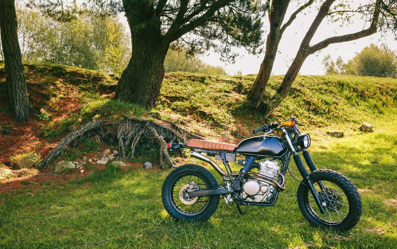 Custom motorcycle parked in the field. Beautiful vintage custom motorcycle parked in the field royalty free stock photos