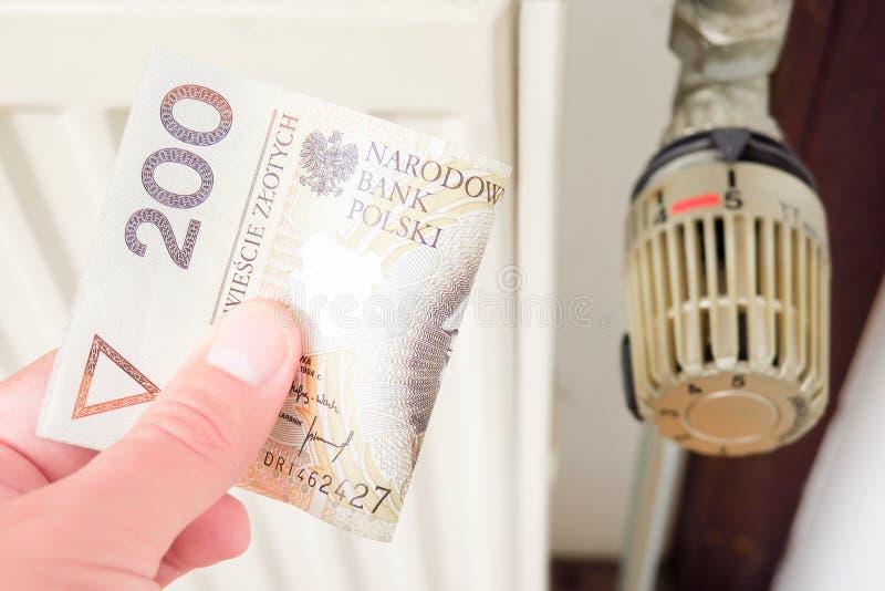Custos de aquecimento poloneses grandes fotografia de stock royalty free