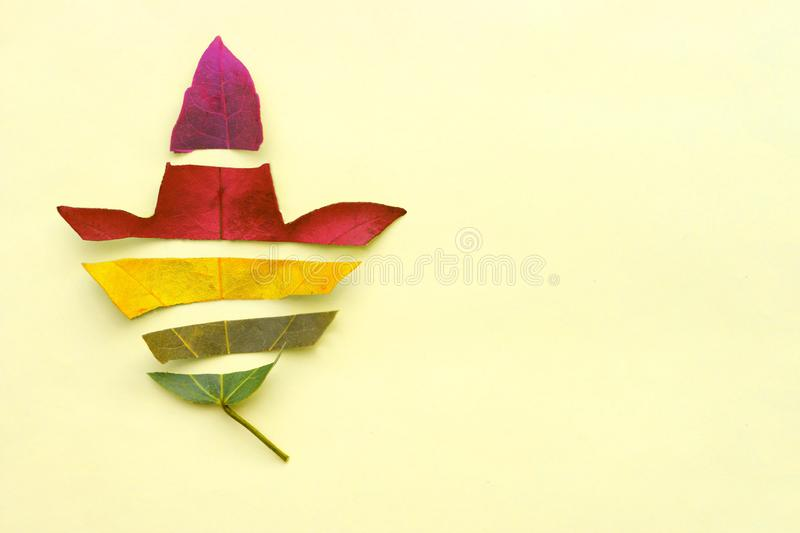 Cut autumn leaf of different colors. Seasons change concept. Minimal. Fall Background,copy space. Cut autumn leaf of different colors. Seasons change concept royalty free stock images