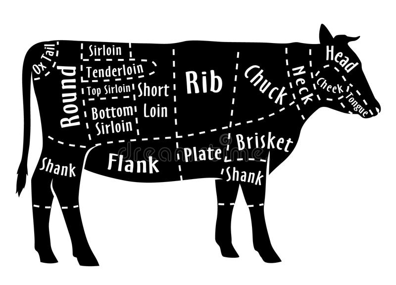 Cut of beef, diagram for butcher. Beef cut. Cut of beef, diagram for butcher. Poster for butcher shop. Guide for cutting. Vector illustration royalty free illustration