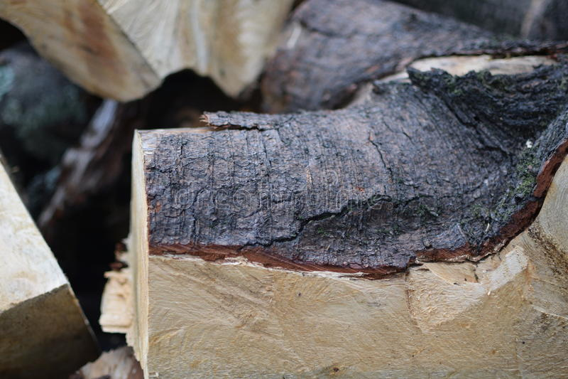 Cut firewood stacked in coffee unfocused royalty free stock images