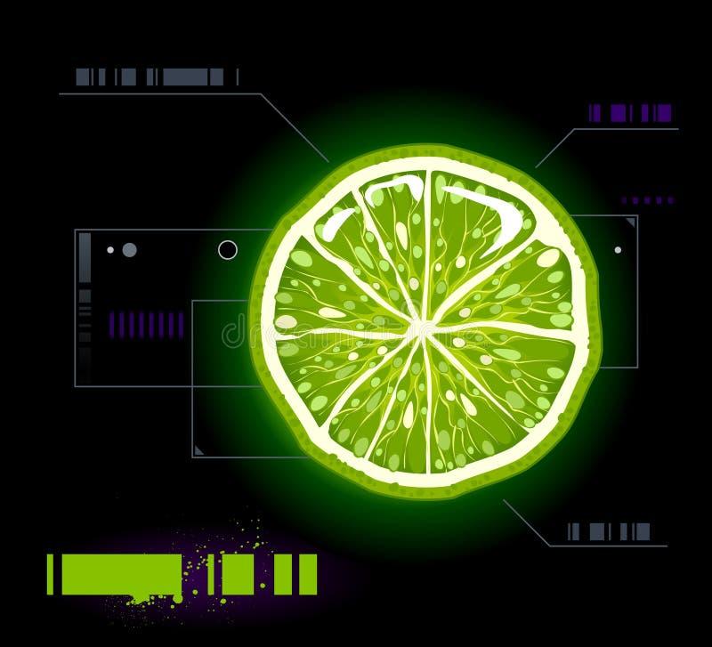 Download Cut lemon stock vector. Image of juicy, citrus, fresh - 10394773