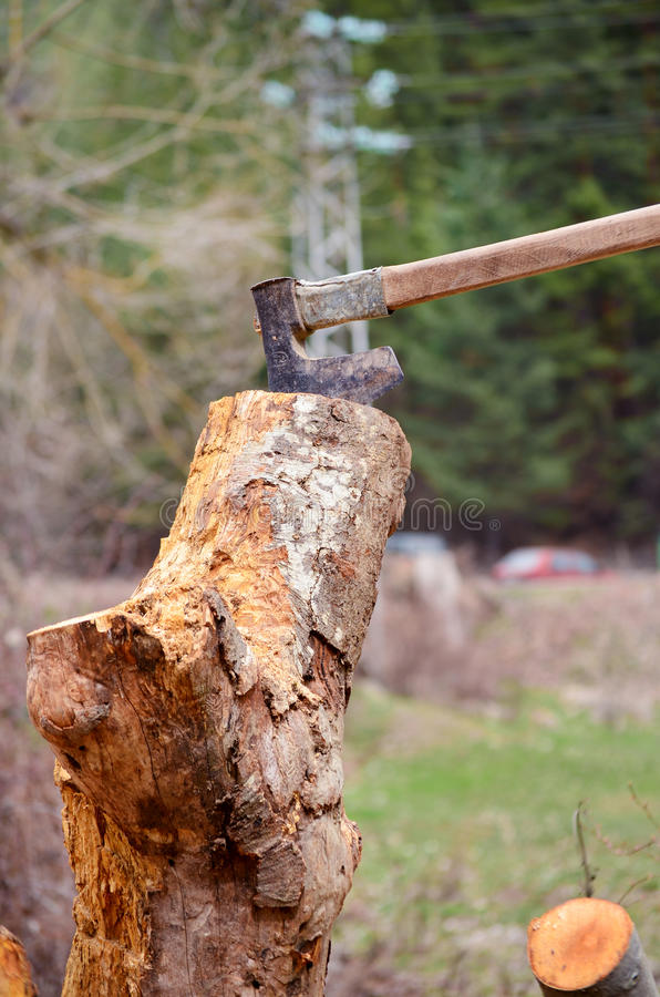 Cut logs fire wood and old axe stock photography