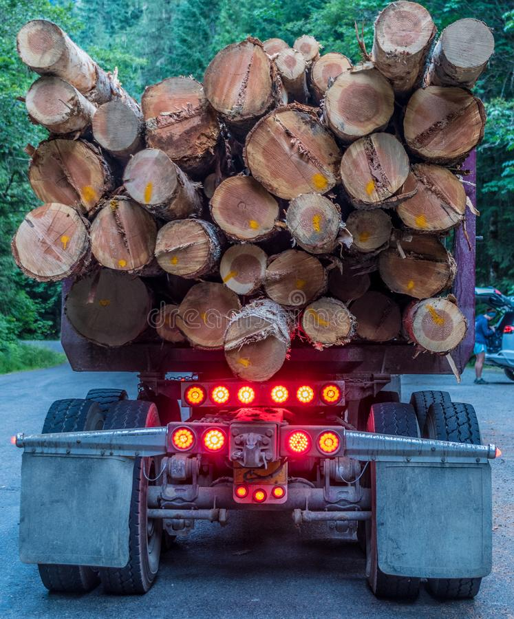Cut Logs Hanging Off Logging Truck. On forest road stock photos