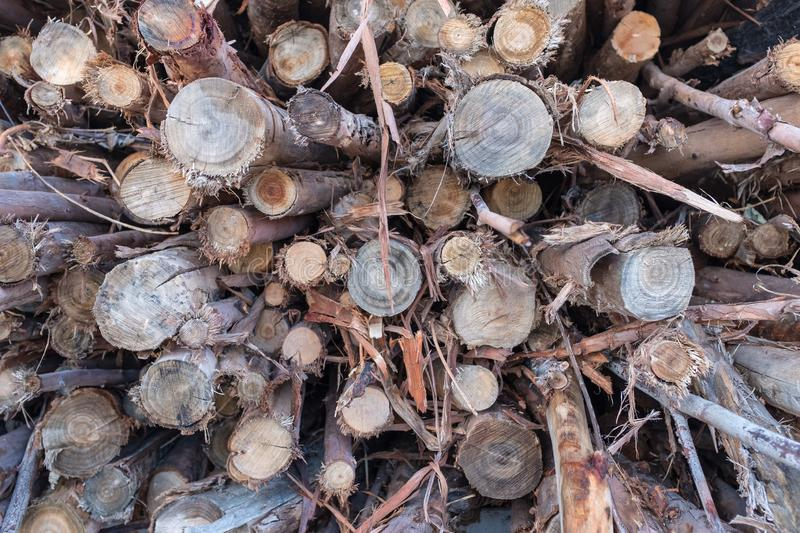 Logs in transport royalty free stock photos