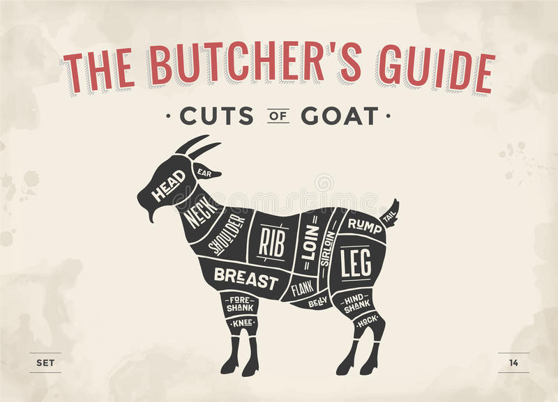 Cut of meat set. Poster Butcher diagram, scheme - Goat. Vintage typographic hand-drawn goat silhouette for butcher shop, restaurant menu, graphic design. Meat royalty free illustration