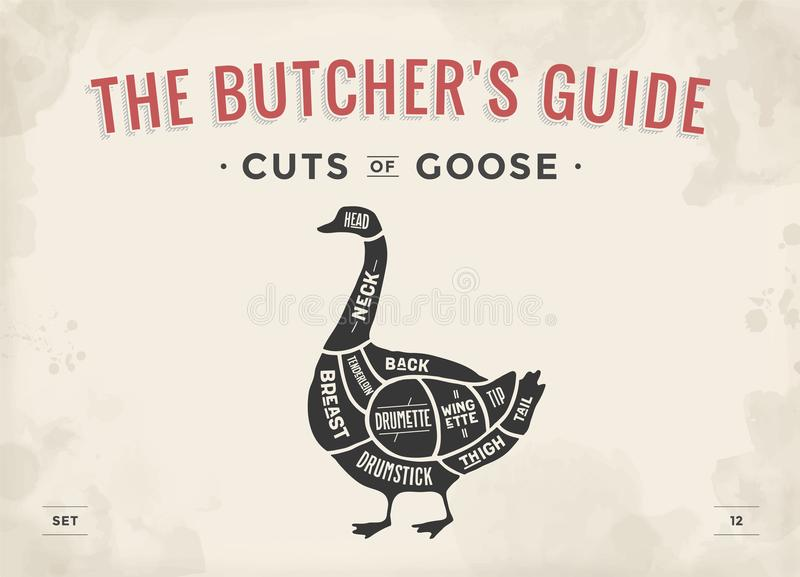 Cut of meat set. Poster Butcher diagram, scheme - Goose. Vintage typographic hand-drawn goose silhouette for butcher shop, restaurant menu, graphic design vector illustration