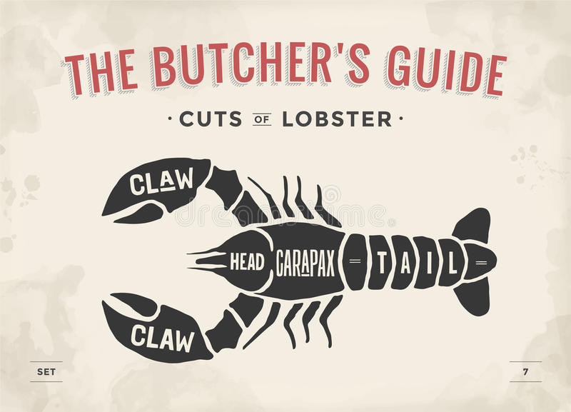 Cut of meat set. Poster Butcher diagram and scheme - Lobster stock illustration